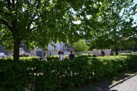 Viel umliegendes Grün: Zahlreiche Parkanlagen & der Landwehrkanal