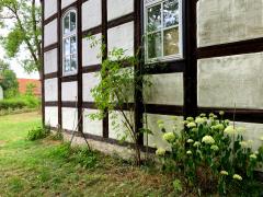 Detail Haus