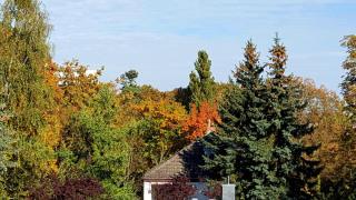 Ausblick im Oktober