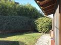 Garten bei Terrasse