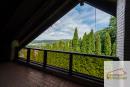 Ausblick Balkon DG