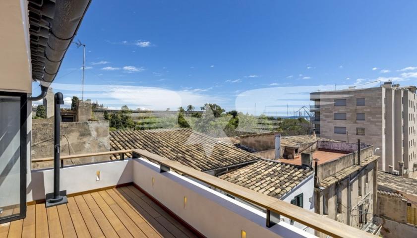 Terrace 2°