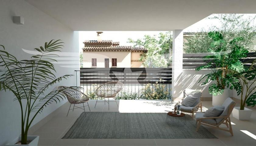 Visualisation of terrace
