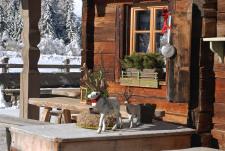 Offmarket: Chalet mit Restaurant direkt im Skigebiet der 3 Zinnen - Südtirol