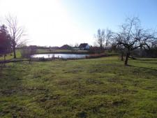 1 Ländliches Baugrundstück am Teich