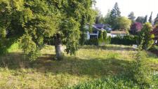 Grundstücks-Ansicht
