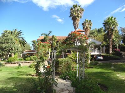 The villa is nestled in the garden
