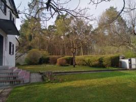 Garten Norden