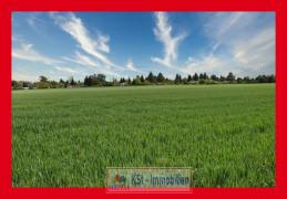 Umgebung Felder u. Wiesen