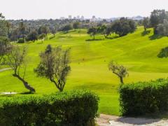 Golfclub.png