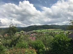 Blick von Terrasse Richtung Ost
