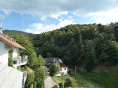 Blick vom Balkon DG nach Süd