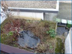 Terrasse mit Garten vom balkon