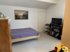 Zimmer mit Schlupf