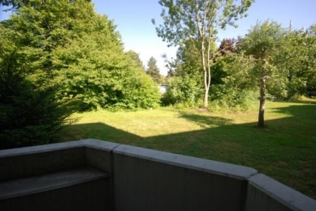 Ausblick i.d. Garten