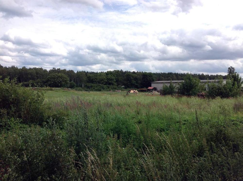 (10) Wohnpark Am Waldrand