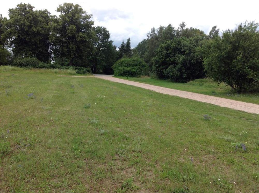 (06) Wohnpark Am Waldrand