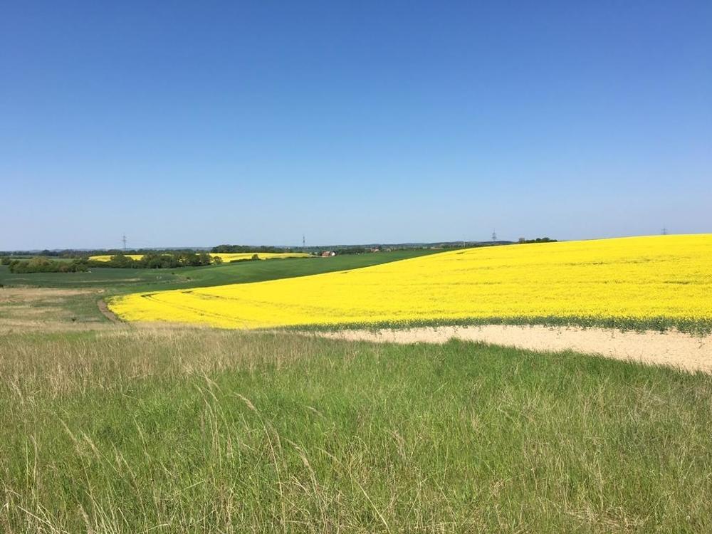 1. Landwirtschaftliche Fläche