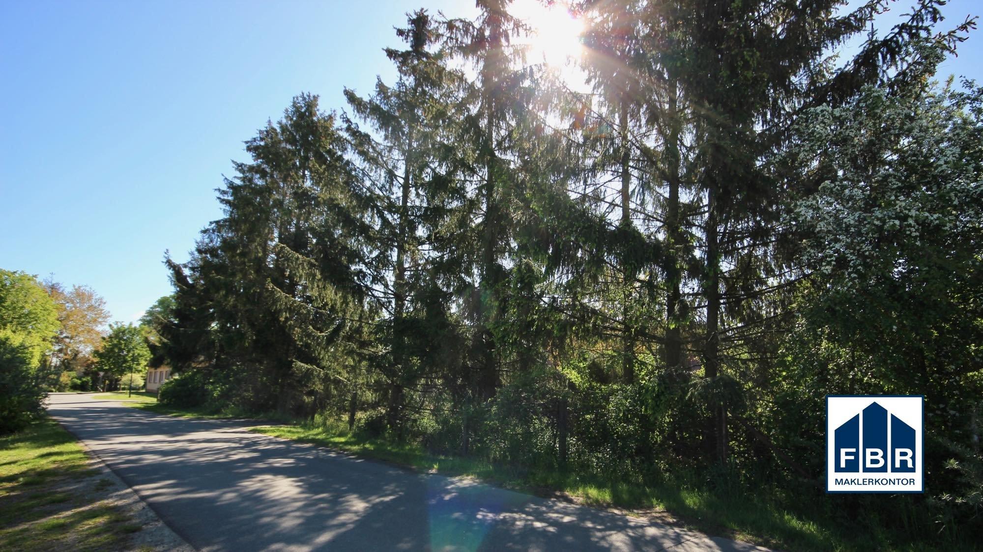 Straßenansicht des hinteren Grundstücks