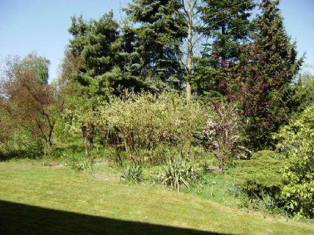 Vorgartenbereich