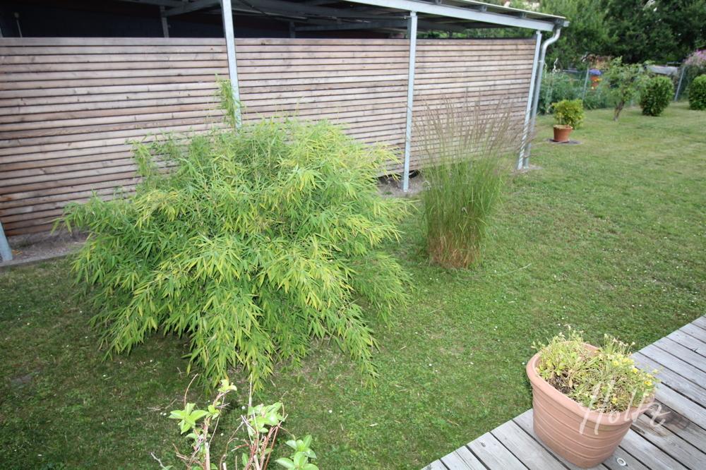 Gartendetail 1