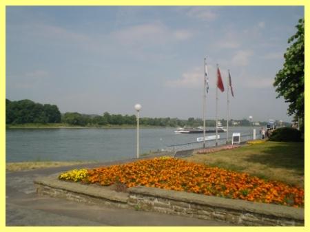 Rheinpromenade in nächster Umgebung