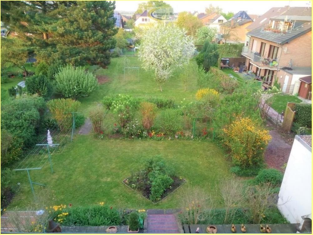 Gesamtansicht des Gartens