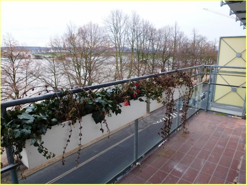 Balkon mit Rheinblick