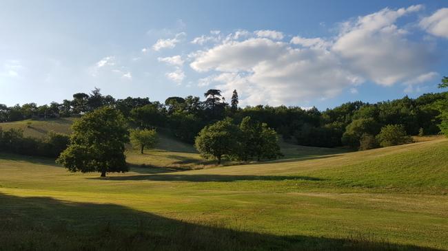 Golfplatz am Morgen