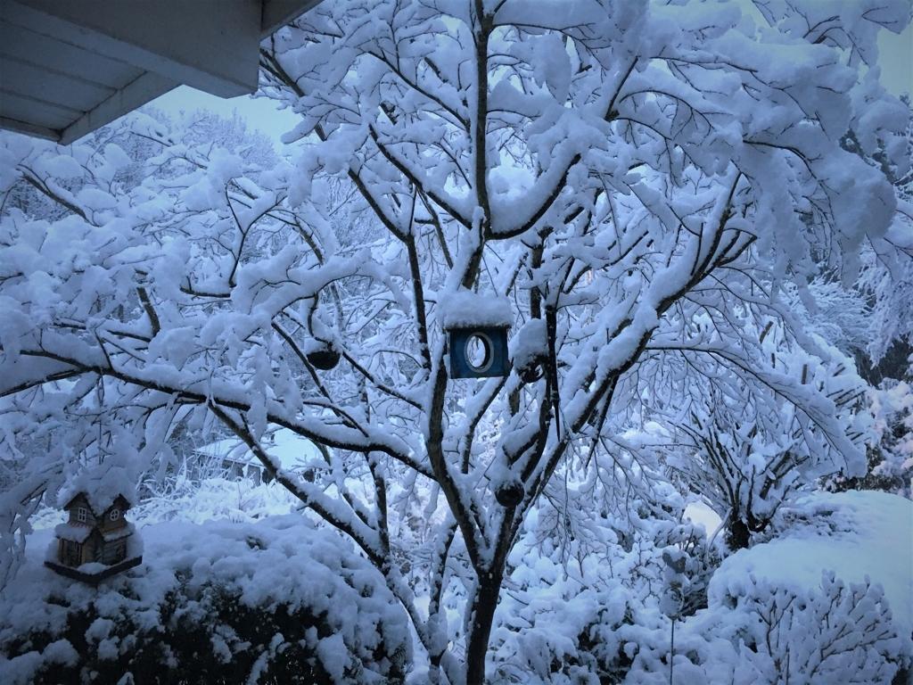 Winterlandschaft am Abend