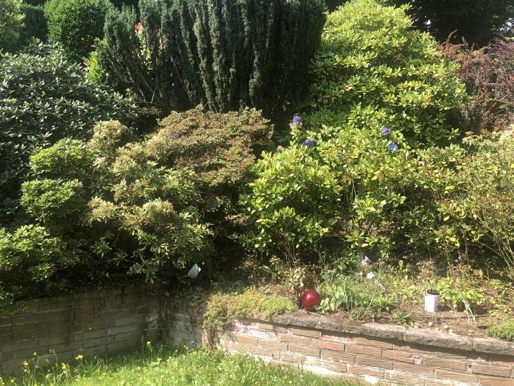 Garten, angelegt