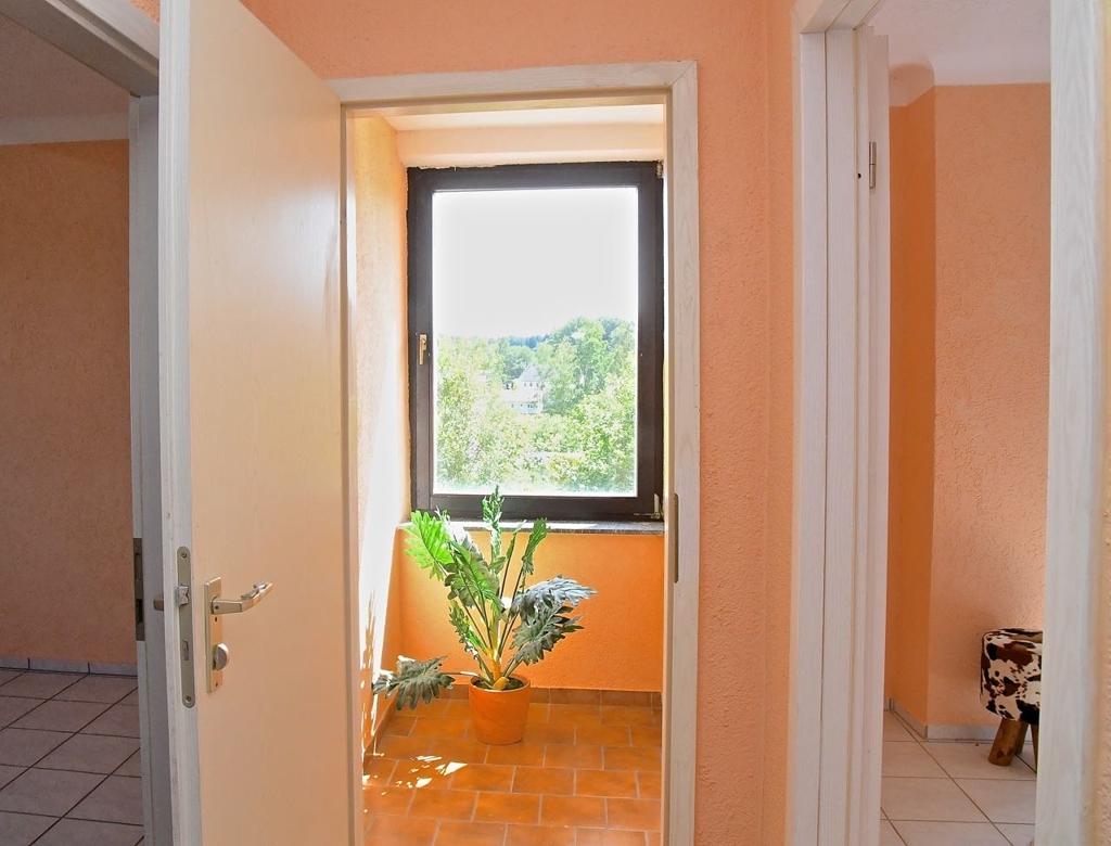 Wohnung 3 Ausblick