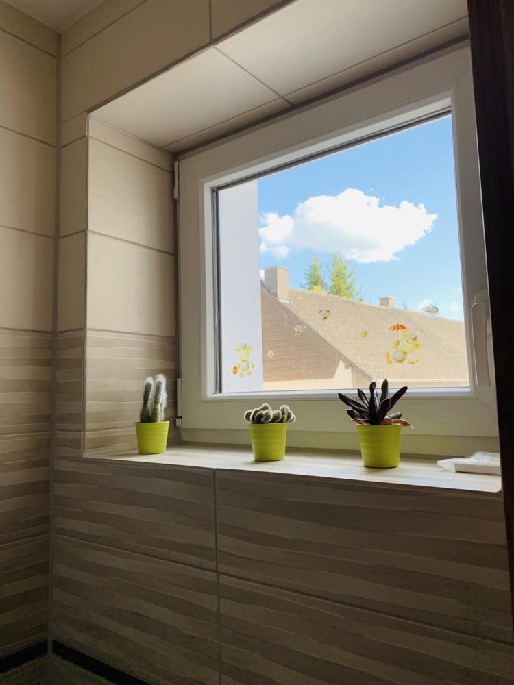 Fenster Gäste WC