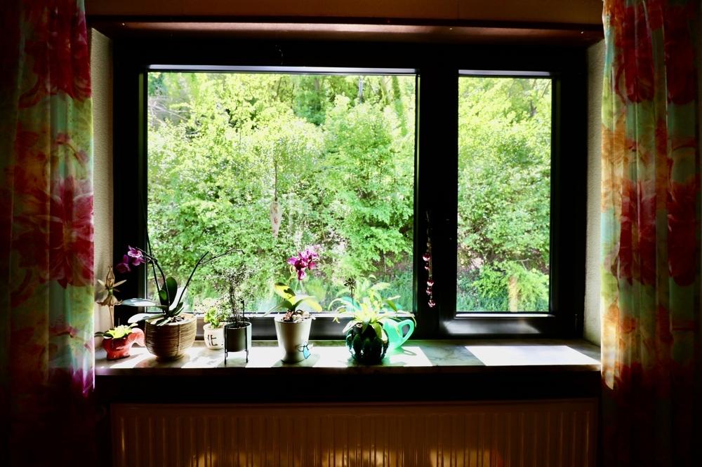 Obj 68_OG Yoga Fenster