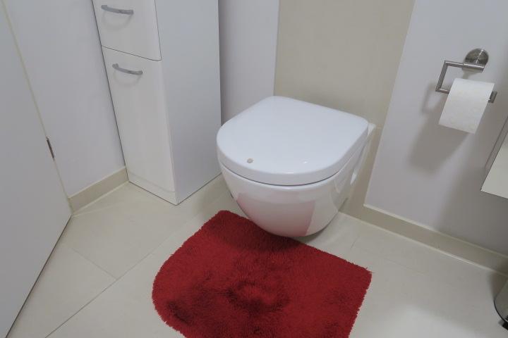 2719-Bad Detail Toilette