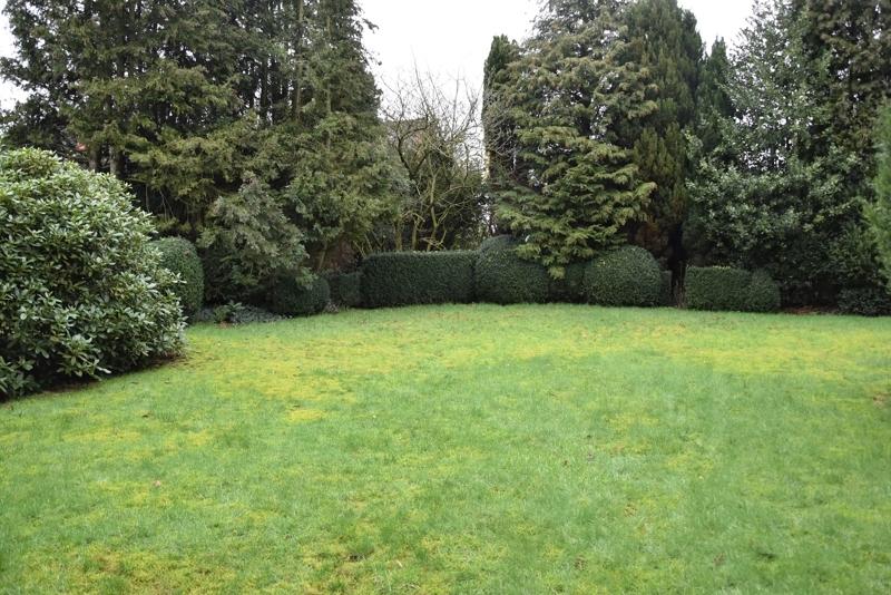 Garten Ansicht I