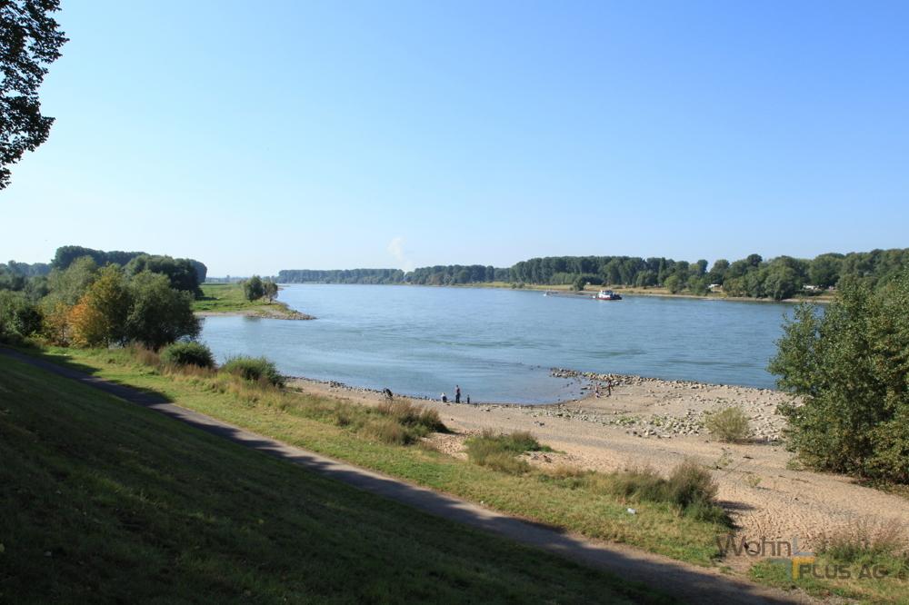 Rhein_2