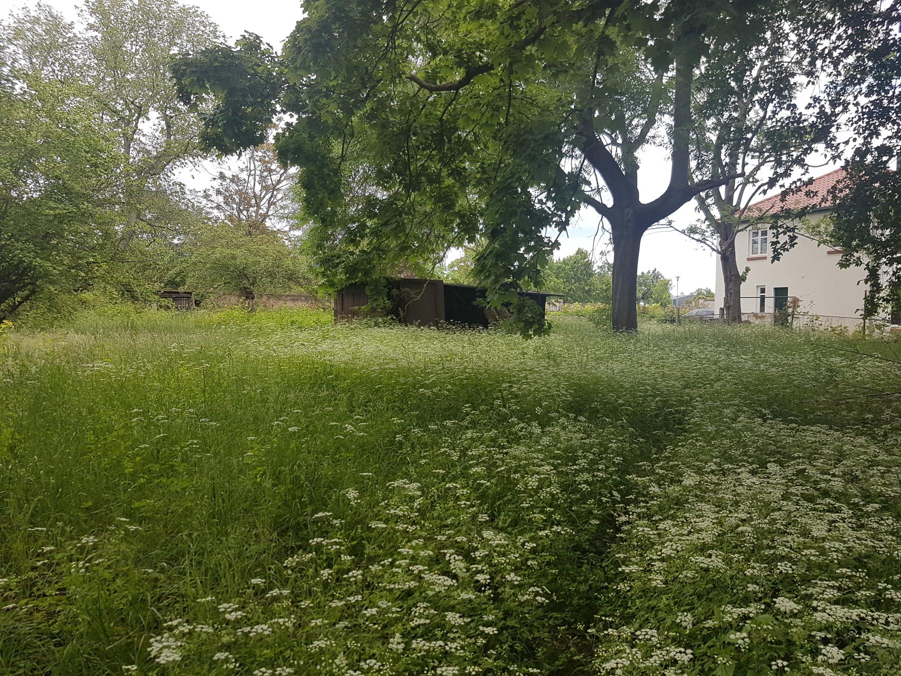 Grundstück2