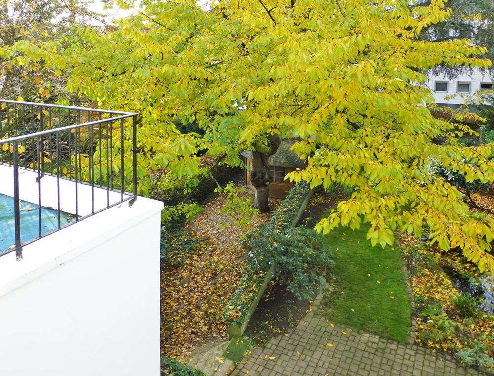 Teilans. Garten