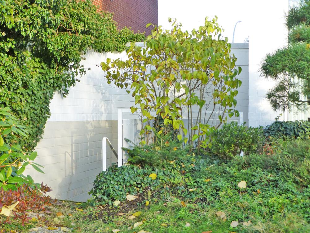 Ausgang Appartement zum Garten