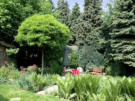 I Teilansicht Garten