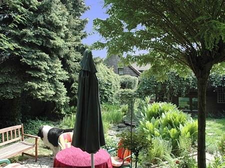 V  Teilansicht Garten