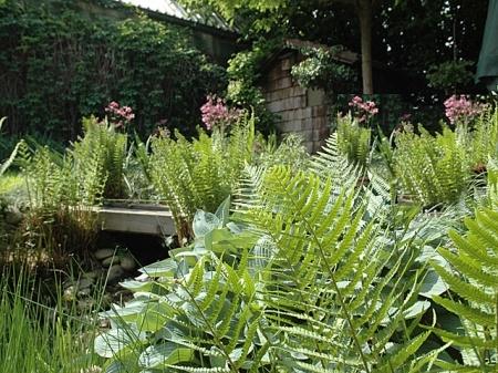 IV  Teilansicht Garten
