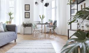 Wohnung mit vielen Pflanzen