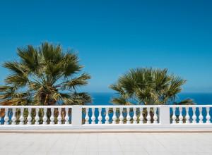 Palmen Balkon