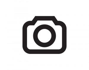 Frau mit Miniaturhaus