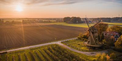 Felder bei Sonnenuntergang