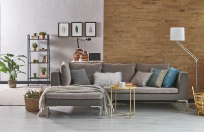 Gemütliches Wohnzimmer mit Pflanzen