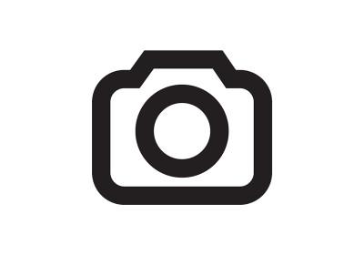 Junge Familie beim Umzug