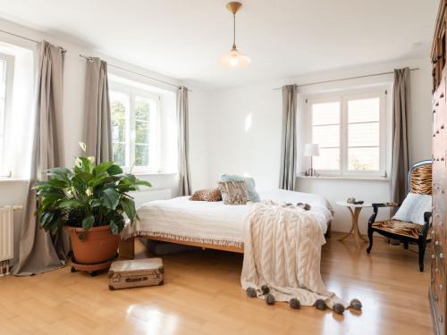 Schlafzimmer mit Zimmerpflanze